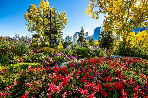 Calgary Interesting Sights Princes Island Park