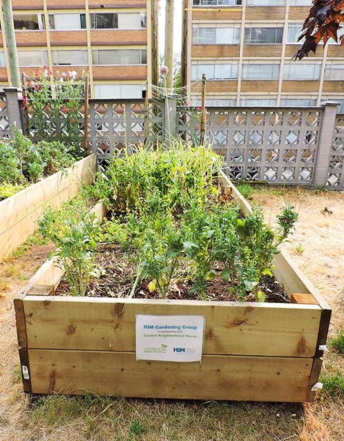 Sustainability Community Gardens 1